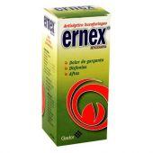 ERNEX SOLUCION 120 ML
