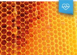 Un auténtico manjar, el alimento de la abeja reina: La Jalea Real
